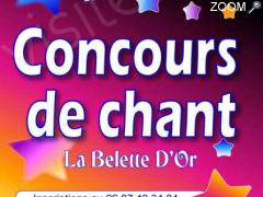 picture of Concours de chant la belette d or